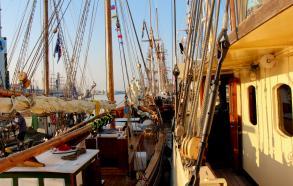 Skonnerten Jylland Tall Ships Race 2013